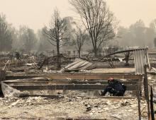 JACKSON, Oregon. -- FEMA Search and Rescue teams from Nevada and Utah scour through debris under the direction of the Jackson County Sheriff's Department.